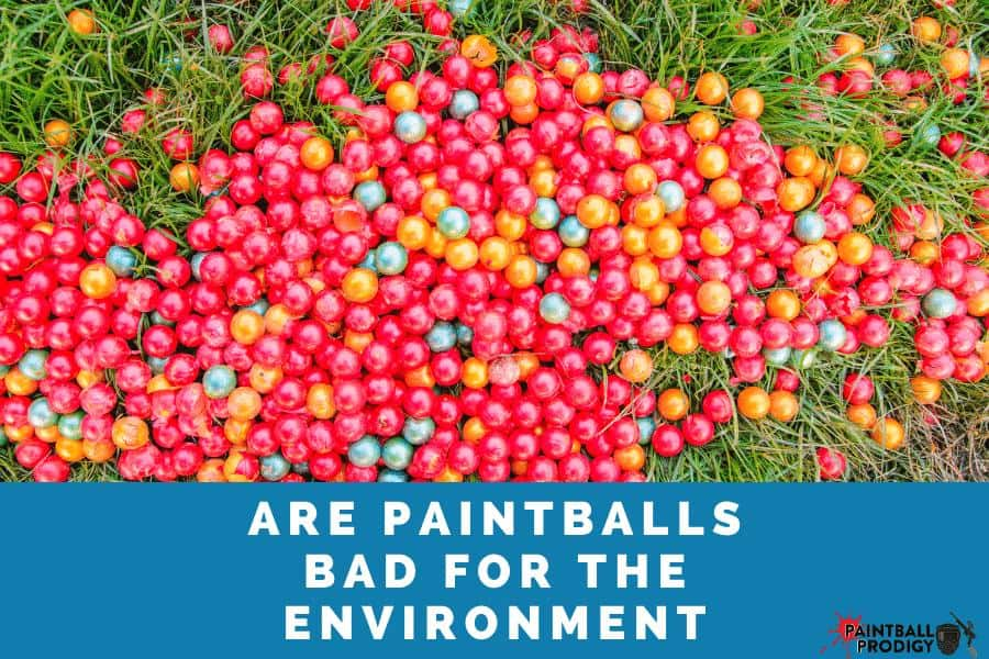 Paintballs aren't bad for the environment